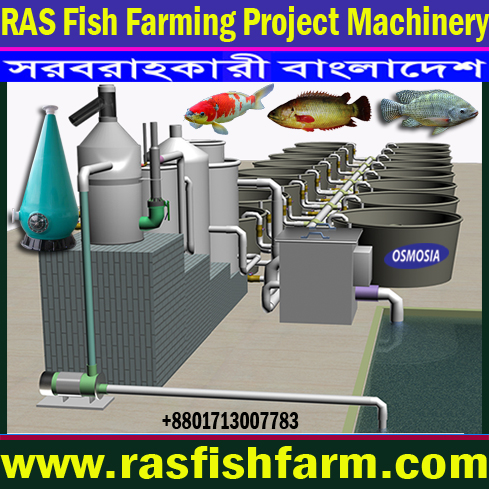 RAS Indoor Fish Farming Project Supplier Company Bangladesh